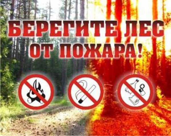 В лесах Прикамья будет действовать особый противопожарный ре…